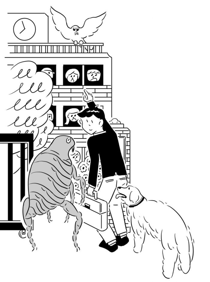 nomi illustration3