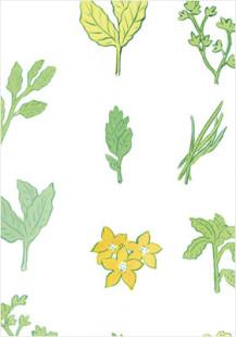 herb cosmetics C